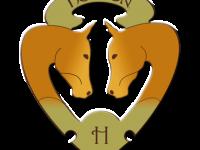 logo_Henson (1)